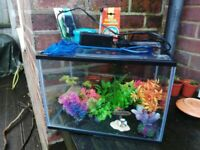 Fish tank (inc. filter and many accessories)