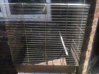 Nice cage