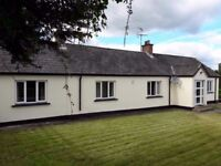 3 Bed country house in Mid Ulster area (2.5 mile to Stewartstown) available for immediate occupation