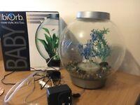15L biorb fish tank