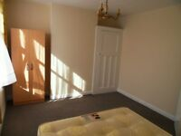 Nice double room to let in Seven Kings (only for one person)