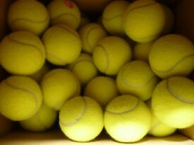 Quantity 100 Quality Used Tennis Balls and 100 new US Wilson Open Extra Duty