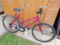 Ladies Dynamix Bicycle in Good Condition