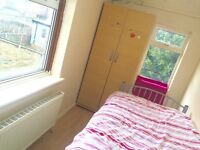 Nice single room to let for female/professionals