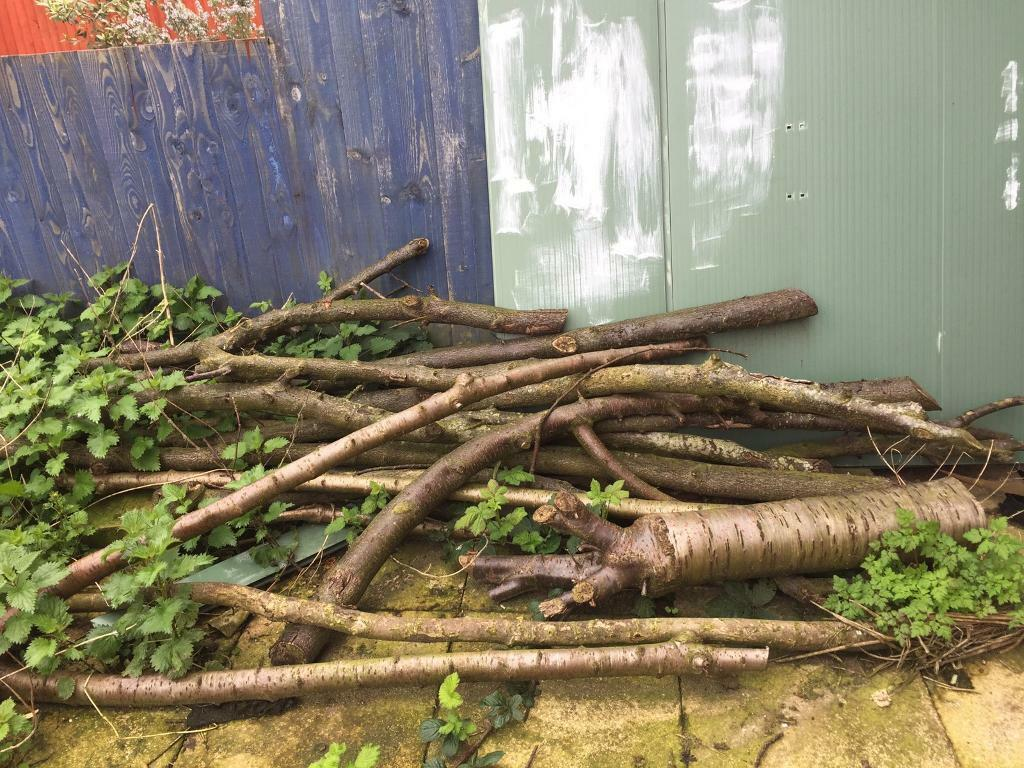 Logs (free) | in Patchway, Bristol | Gumtree