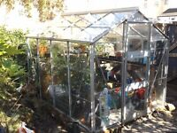 greenhouse in good condition with automatic vent window