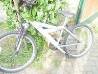 Gazelle ladies/girls bike