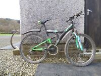 Mountain Bike, Decender Emmelle 18 speed gears