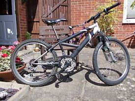 """Well looked after BMX MTB, wheels 24"""", front suspension, 18 gears, serviced."""