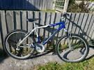 Saracen enzyme mountain bike