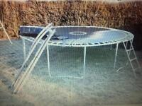 12 foot Trampoline with enclosure netting and ladder.