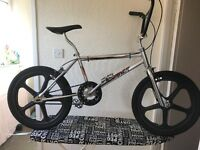 Raleigh burner mk2 CR MO