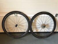 Roval Rapide CLX 32 Carbon Wheels