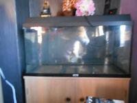 3ft Fish Tank & Cupboard(Stand) for Sale