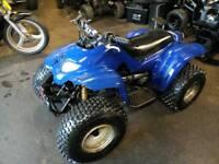 Blaney 100cc 2stroke Quad 2010