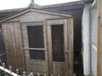 dog pen kennel shed 8x4