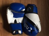 Boxing/ kung fu junior gloves