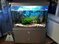 2 tanks for sale 4 foot and 2 foot