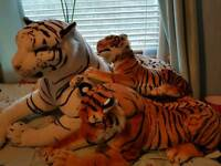Family of Tigers!