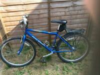 Raleigh Bicycles for sale !!