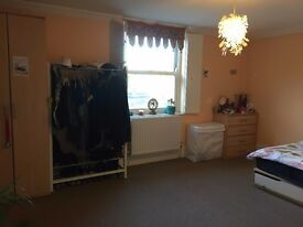 Spacious one bedroom flat in great location in Stoke Newington - SHORT LET