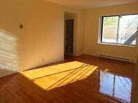 large 1 bedroom apartment near Villa Maria metro. 1 MOIS GRATUIT