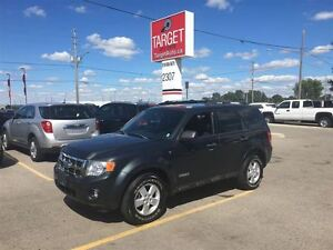 2008 Ford Escape XLT Low Low Kms Very Clean