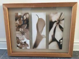 Next, boxy picture of flowers/ lily. Pine frame
