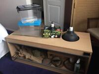 4ft Vivarium and accessories - full set up and more!