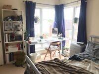 Room with a View of the River - Short Term Sublet