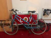 Women's Apollo Bike