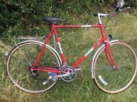 Vintage Road Bike large frame