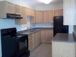 2BD is on promotion for Nov! $300 off for three months' rent!