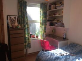 Amazing student flat close to Queen's and City Centre