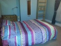Lovely large double room, Bournville
