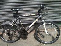 cheap mountian bike good runner £50