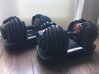 Bowflex Adjustable 552 Dumbbells & Pro Fitness Weights bench