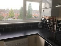 whole 4 bedroom flat available for next academic year