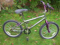 HAWK BMX ONE OF MANY QUALITY BICYCLES FOR SALE