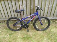 Boy's bike 15 inch wheel trim - good condition