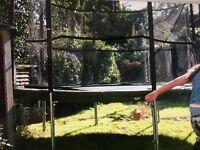 Round 12 foot trampoline with dark green rim