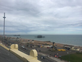 Hove: Double room available in lovely seafront flat