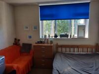 A very spacious double room with own fridge and sofa is available for rent ASAP
