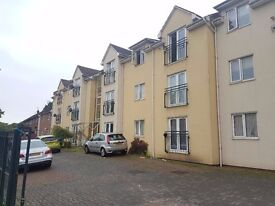 Immaculate 1 Bedroom Flat Available For Let - Housing Accepted