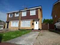 Immaculate newly decorated 3 bedded house