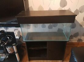 Fish tank and new external filter