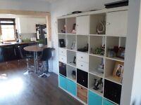Shelfing,Bookcase,Storage unit