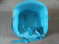 Blue toddler booster seat with straps