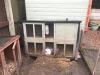 Rabbit hutches for sale