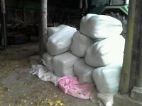 Haylage bales heavy duty small ones approx 35 kg